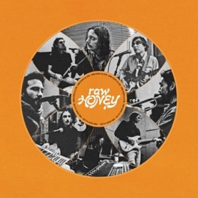 Drugdealer - Raw Honey LP