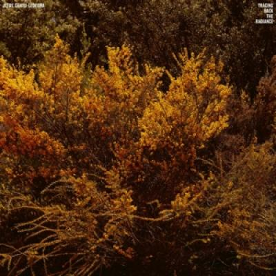 Cantu-Ledesma, Jefre - Tracing Back The Radiance (LP)