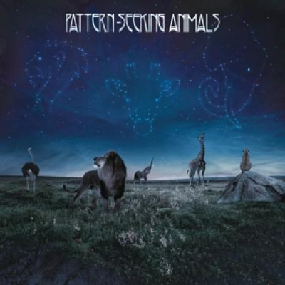 Pattern-Seeking Animals - Pattern-Seeking Animals (3LP)