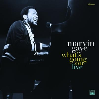 Gaye, Marvin - What'S Going On (2LP)