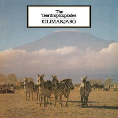 Teardrop Explodes - Kilimanjaro (LP)