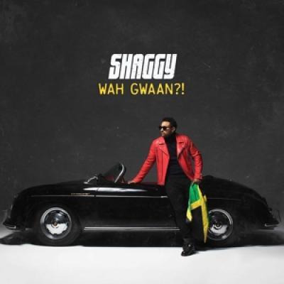 Shaggy - Wah Gwaan?! (Light Green + Yellow Vinyl) (2LP)