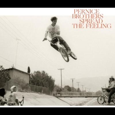 Pernice Brothers - Spread The Feeling