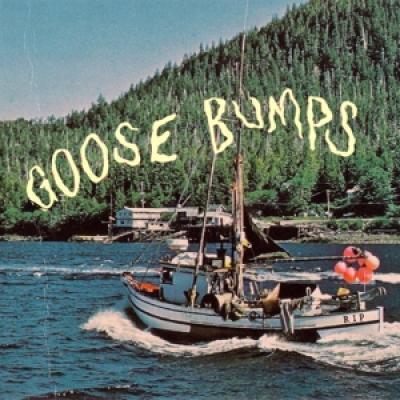 Boyscott - Goose Bumps (LP)