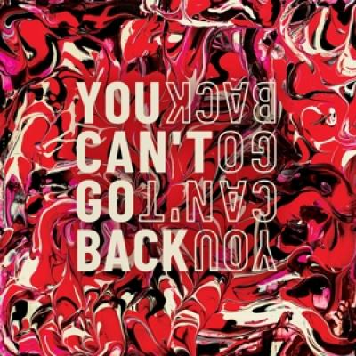 Sarin - You Can'T Go Back (LP)