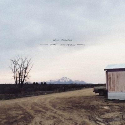Johnson, Will - Wire Mountain (Bone) (LP)