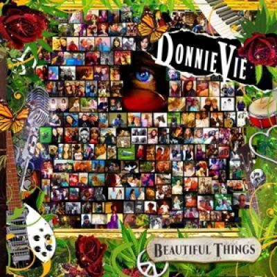 Vie, Donnie - Beautiful Things (LP)