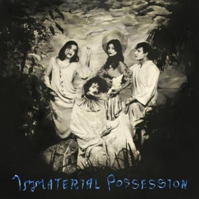 Immaterial Possession - Immaterial Possession (LP)
