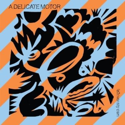 A Delicate Motor - Fellover My Own (LP)