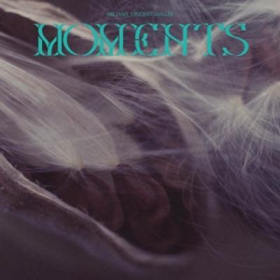 Waller, Michael Vincent - Moments (2LP)