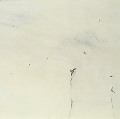 Mazurek, Rob - Alternate Moon Cycles LP