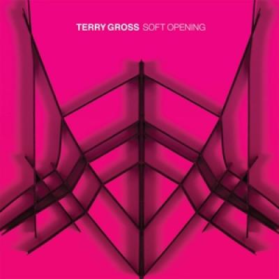 Gross, Terry - Soft Opening (Translucent Pink) (LP)