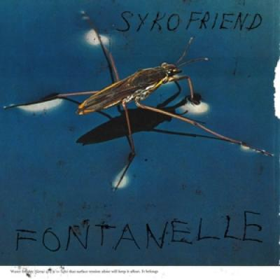 Syko Friend - Fontanelle (LP)