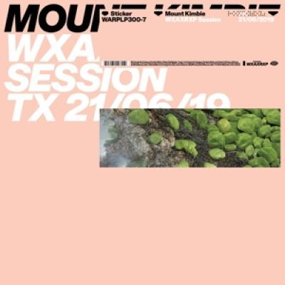 Mount Kimbie - Wxaxrxp Session (12INCH)