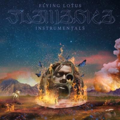 Flying Lotus - Flamagra (Instrumentals) (Incl. Slipmat) (2LP)
