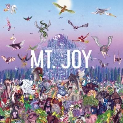 Mt. Joy - Rearrange Us