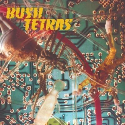 Bush Tetras - There'Is A Hum (7INCH)