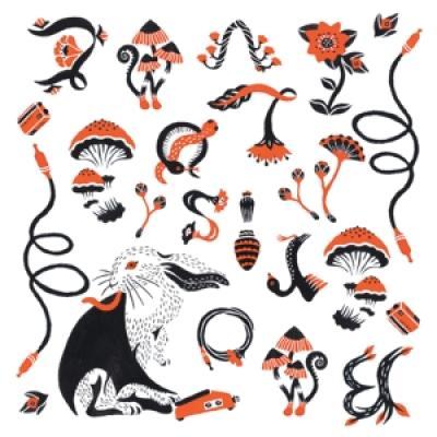 Boris - Love & Evol (2CD)