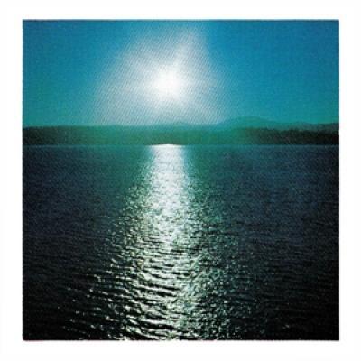 Brouk, Joanna - The Space Between (LP)