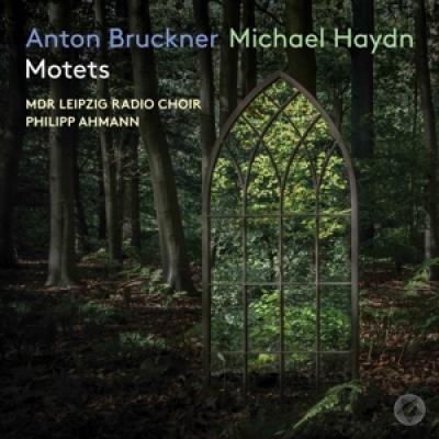 Mdr Leipzig Radio Choir / - Anton Bruckner & Michael Haydn Motets