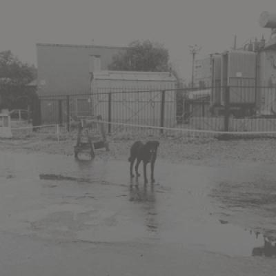 Nivhek - After Its Own Death (2LP)