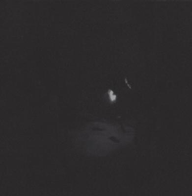 Paysage D'Hiver - Nacht (2LP)