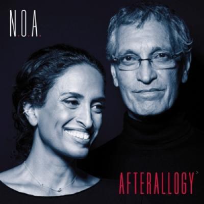 Noa - Afterallogy (LP)