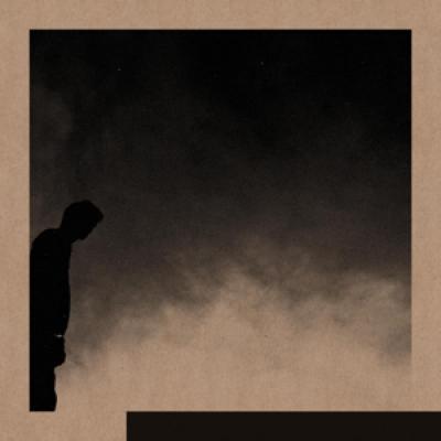 Allred, David - Felt The Transition (LP)