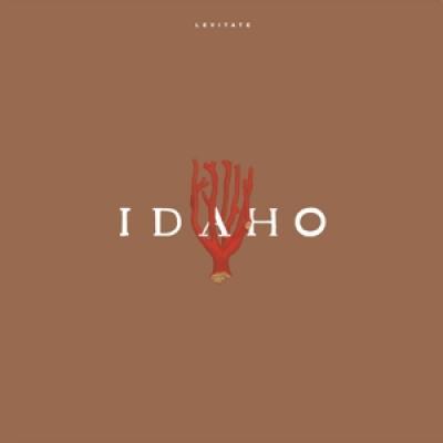 Idaho - Levitate (LP)