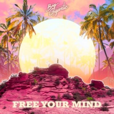 Big Gigantic - Free Your Mind (2LP)