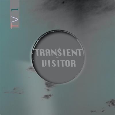 Transient Visitor - Tv1 (Silver Vinyl) (LP)