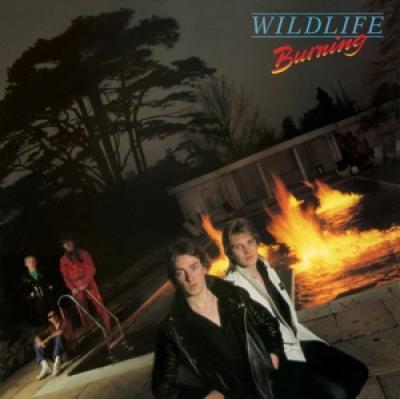 Wildlife - Burning