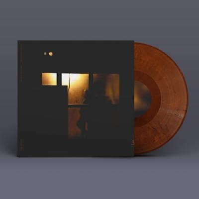 Vasandani, Sachal - Midnight Shelter (LP)