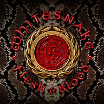 Whitesnake - Flesh & Blood (CD+DVD)