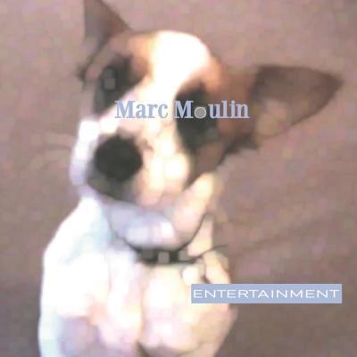 MOULIN, MARC - ENTERTAINMENT (LP) (Translucent Vinyl)