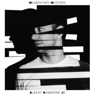 Albert Hammond Jr. - Momentary Masters (LP)