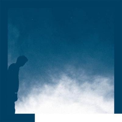 Allred, David - The Transition (LP)