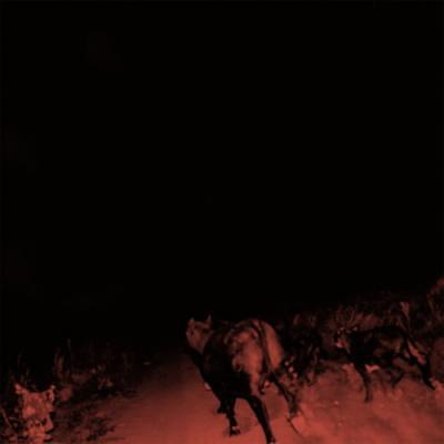 Bambara - Shadow On Everything