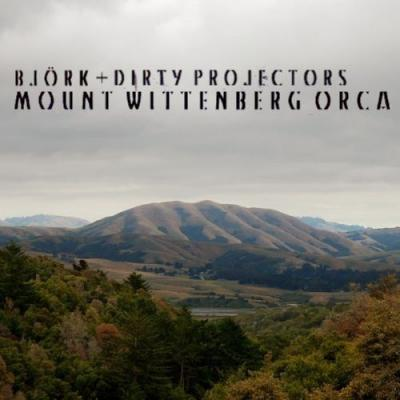 Dirty Projectors & Bjork - Mount Wittenberg Orca (cover)