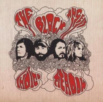 Black Angels - Indigo Meadow (LP) (cover)