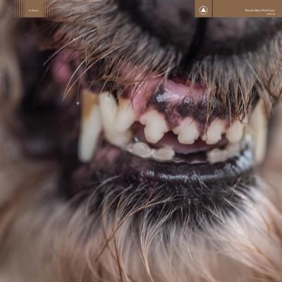 Blanck Mass - World Eater (Black/Red Vinyl) (LP)
