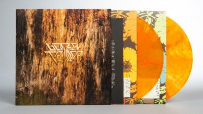 Blitzen Trapper - Furr (Deluxe) (Clear With Gold Swirl Vinyl) (2LP)