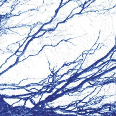 Bony King of Nowhere - Silent Days (Blue Vinyl) (LP)