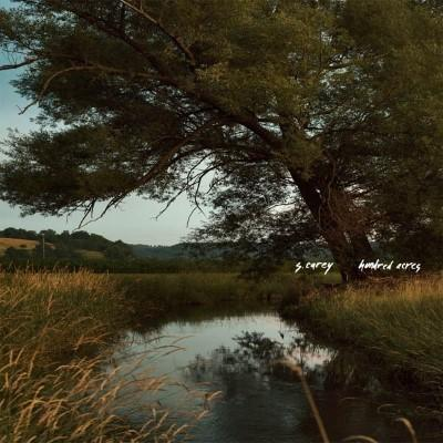 Carey, S. - Hundred Acres (LP)