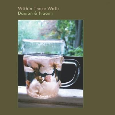 Damon & Naomi - Within These Walls (LP)
