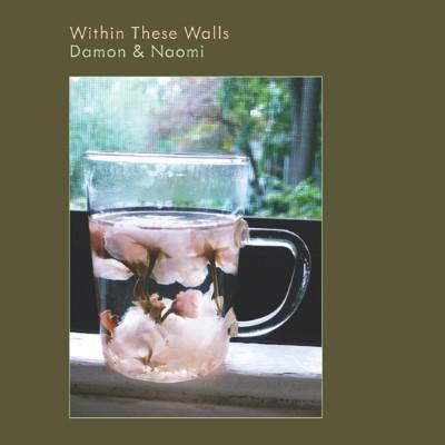 Damon & Naomi - Within These Walls