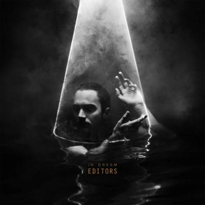 Editors - In Dream (LP)