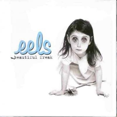 Eels - Beautiful Freak (cover)