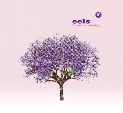 Eels - Tomorrow Morning (cover)