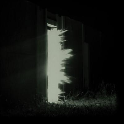 Fink - Horizontalism (LP)